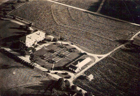 Historic aerial view of Tift Building